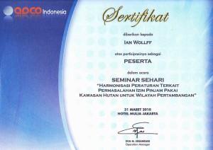 ian-wollff-certificate-2